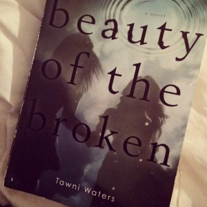 Beauty of the Broken Cover