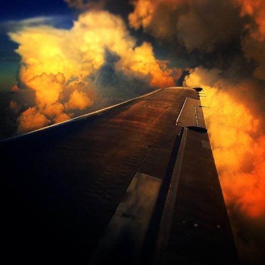 David McD 7171-214 Air Tran