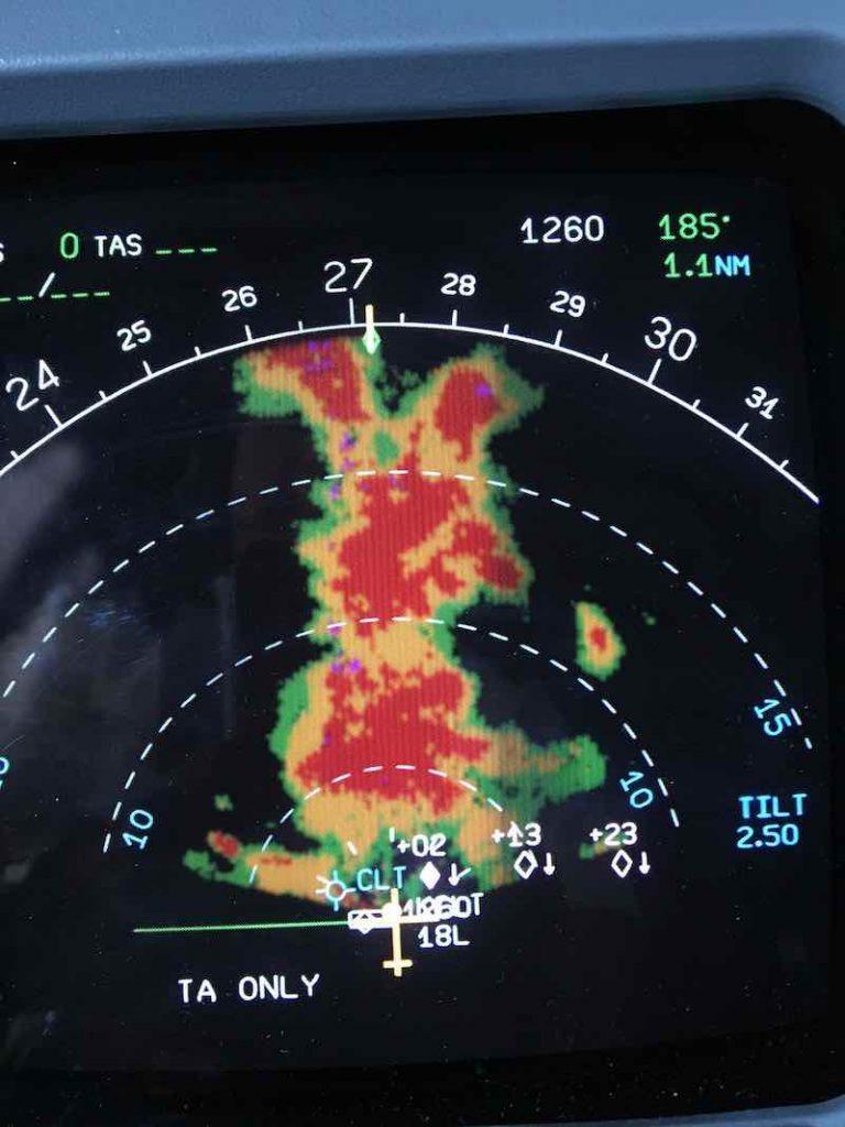 Radar Bunny Halloween Darwin Awards Aviation Style!
