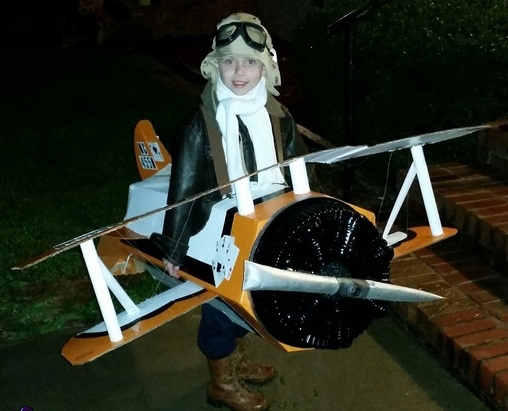 pilot_and_his_biplane2 Safety-A Frightfully Serious Matter